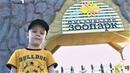 Макс идет в зоопарк жираф гонится за зеброй видео про животных для детей