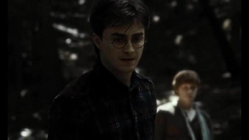 Гарри Поттер и Гермиона Грейнджер | Vine | Harmione