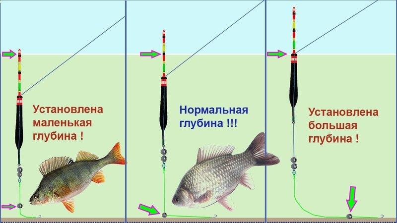 ПОКЛЕВКИ на поплавок. Оснастка, сборка и огрузка снасти, подпасок, выставление глубины, Рыбалка.