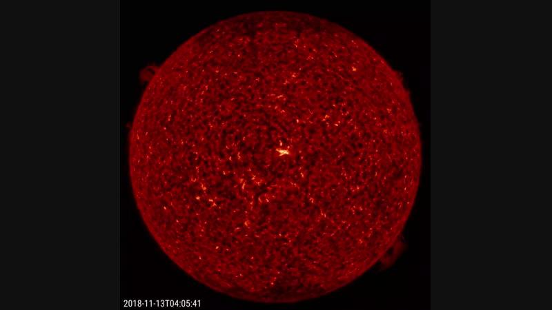 Opposing Solar Prominences