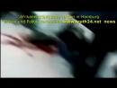 Afrikaner köpft Baby mitten in Hamburg Zeuge veröffentlicht dieses Video