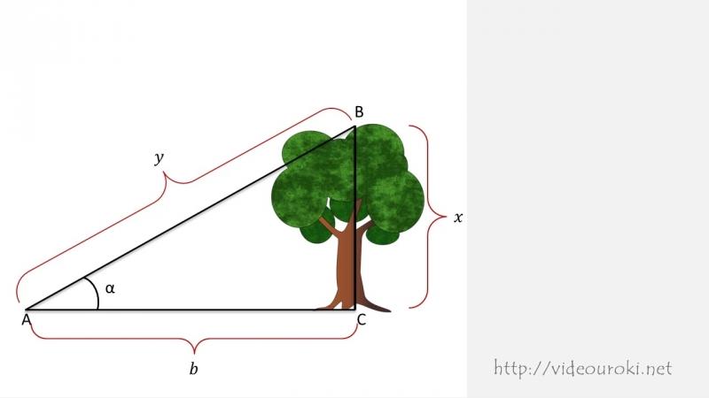 10. Тригонометрические функции углового аргумента.Алгебра