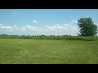 поле по производству газонной травы. Жуковский за аэропортом.