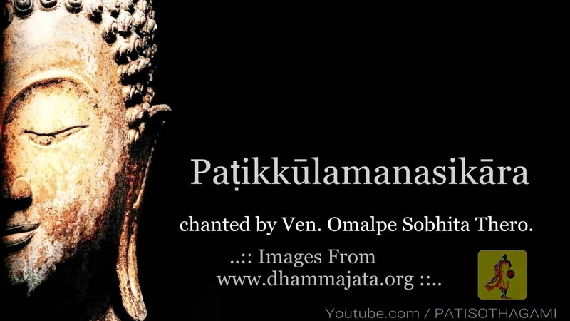 32 Parts of the body meditation in 16 Languages [GRAPHIC CONTENT] Dvattimsakara | patikulamanasikara