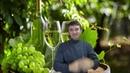 DEAF Белое Вино полезные свойства