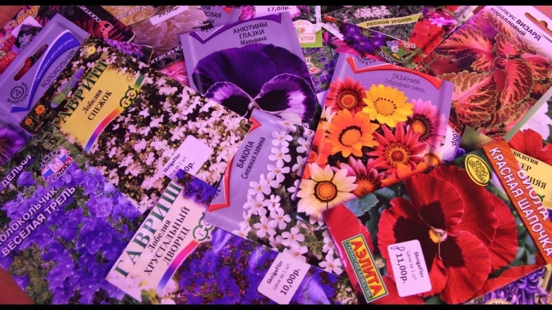 Во саду ли в огороде • Что Посеять В Марте. Как Посеять, Когда Посеять. Цветы.