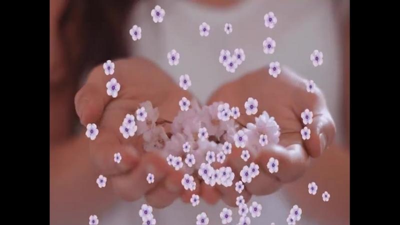 я любовm свою по свету собирала как цветы