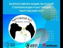 Одна неделя остается до старта Всероссийской акции льготной кастрации и стерилизации Мартовский кот ⠀