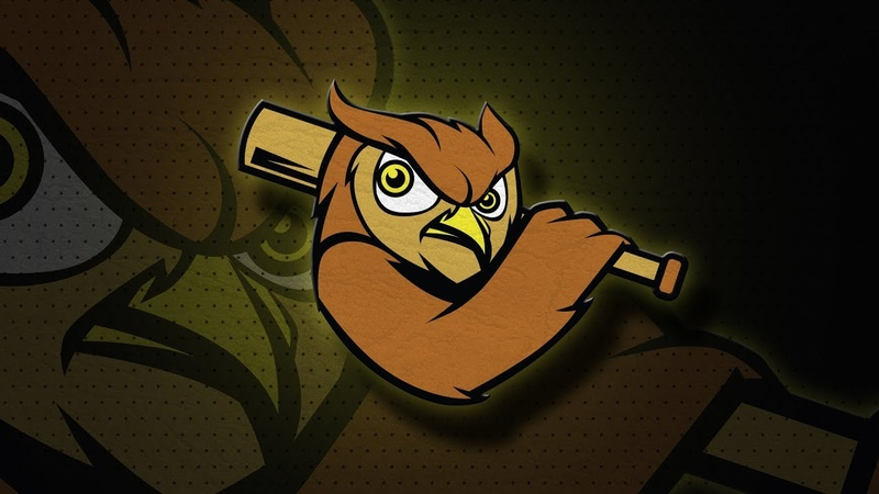 Illustrator Owl Mascot Logo Design Tutorial