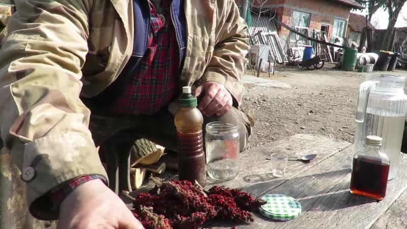 Moko Wiesel Medveđi luk indijanska limunada