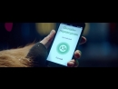 Реклама МегаФон - Стивен Сигал