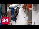 Пешеходов едва не накрыло обломками рухнувшей крыши в Брянске Россия 24