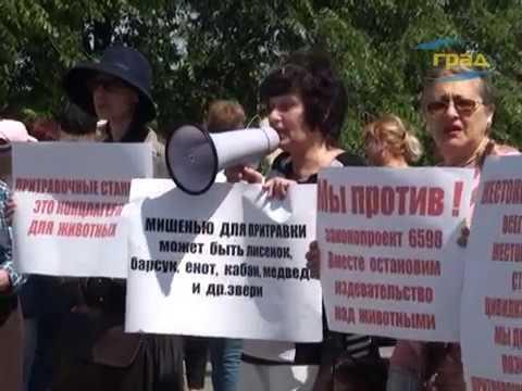 Одесские зоозащитники выступают против притравочных станци