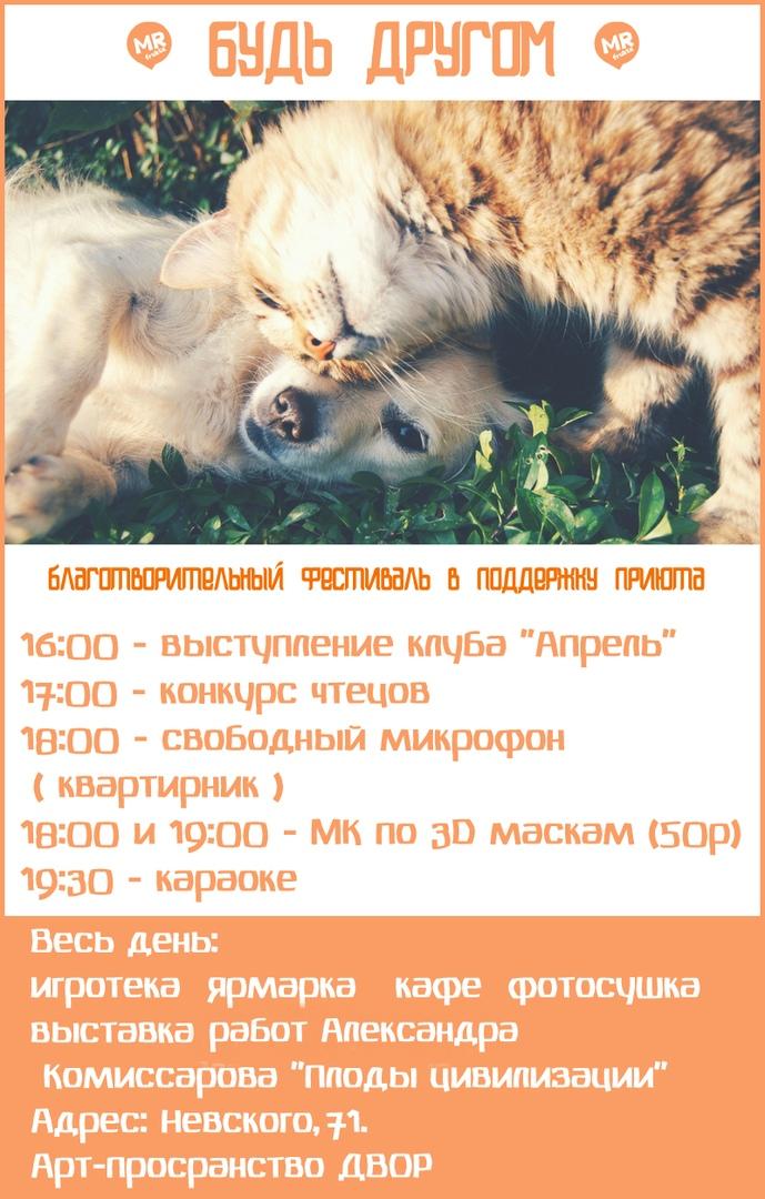 MSUPdTcS8a8.jpg