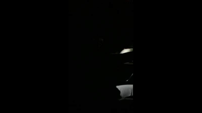 ночная прогулка в городе шымкент)
