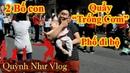 2 Bố Con Quẩy Trống Cơm tại Phố đi bộ Hà Nội Quỳnh Như Vlog