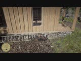 Damn RDR2's got some good physics. Red Dead Redemption 2
