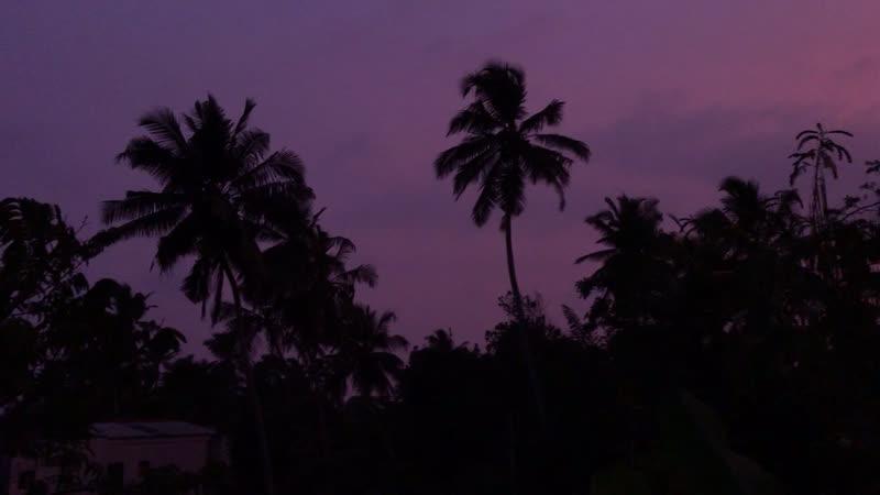 Sunrise in Sri Lanka 🇱🇰