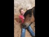 Ты же хотела себе лошадку