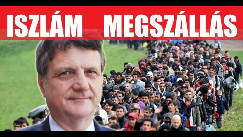 This is not immigration, it is Islamic occupation! | Gerard Batten, UKIP