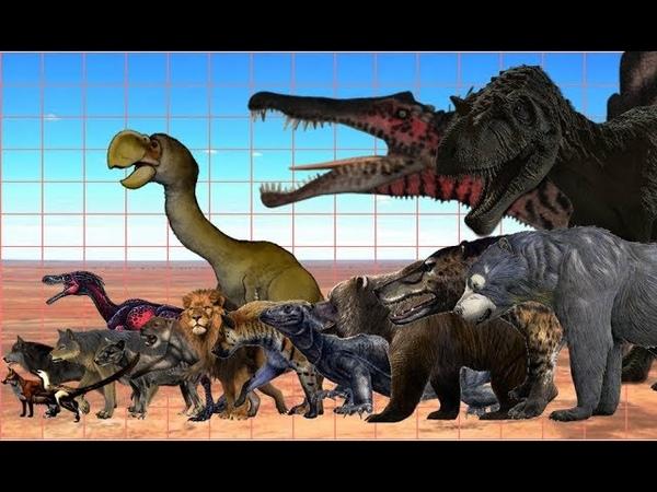 Terrestrial Predators Size Comparison | Extinct and Present