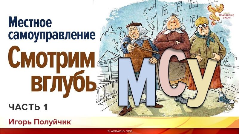 Местное самоуправление Смотрим вглубь Игорь Полуйчик Часть 1