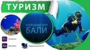 Обучение дайвингу Подводный мир Бали