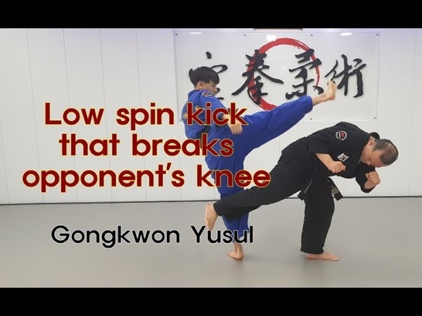 (158)Low spin kick that breaks opponent's knee(Korean martial arts)