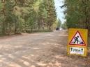 Вести Калуга Состояние дороги до деревни Зимницы в Думиничском районе не Россия Сегодня