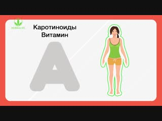 антиоксиданты--природные-источники-молодости