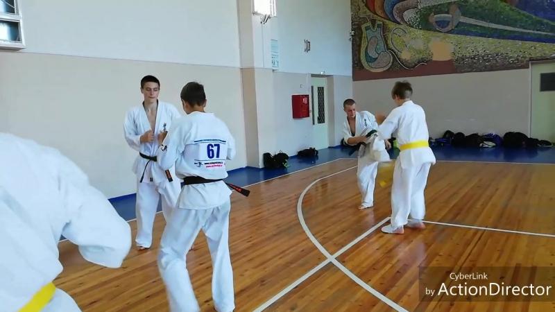 ЖЧ 6 тренировки под руководством Сенсея Леонова А Ю