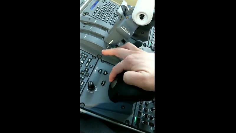 Где в кабине пилотов прячется мышка