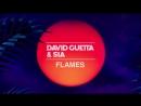 David Guetta Sia - Flames (Тизер)