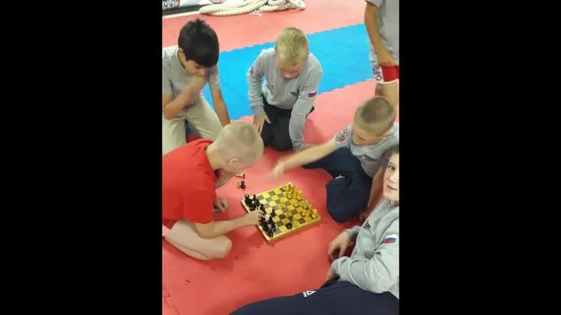 сборы бокс
