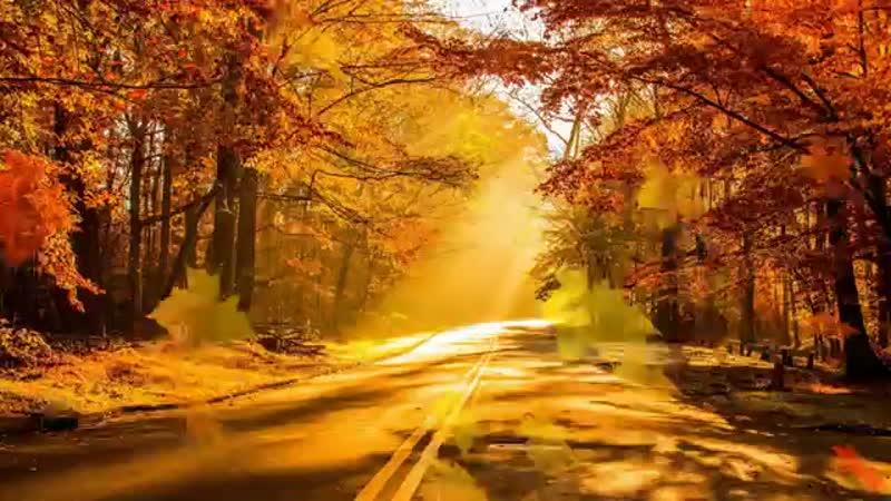 Осеннее поздравление С Днем Рождения