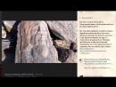 Артефакты Мидгард земли и ЧЛО век
