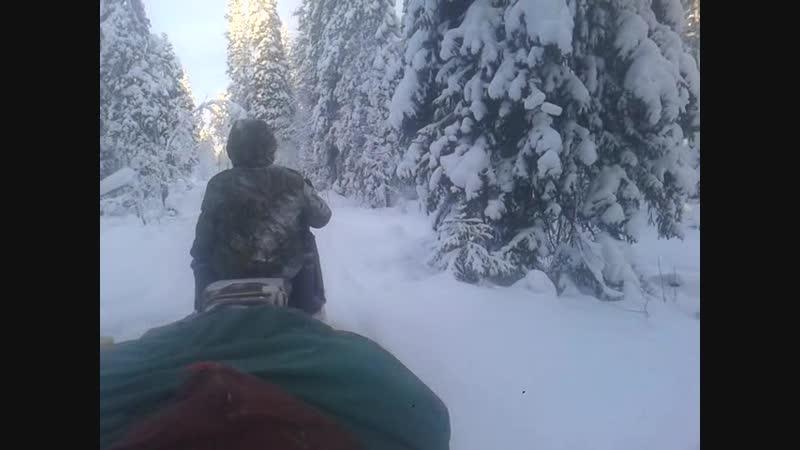 Video-2012-01-01-06-01-39