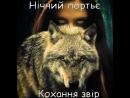 Ні По Кохання звір