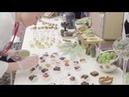 V Banket Catering группа компаний Выездной банкет кейтеринг