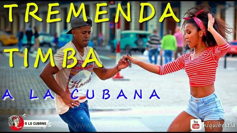 EXCELENT TIMBA CUBANA en La Habana - salsa a lo cubano