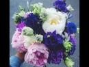 Красивый весенний букет цветов от бесплатного Обнинска