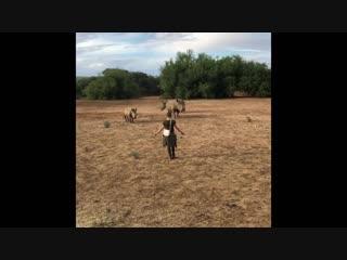 Юлия Барановская с детьми путешествуют по Намибии