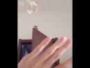 Белка летяга приземляется на руку хозяина