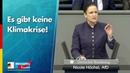 Es gibt keine Klimakrise! - Nicole Höchst - AfD-Fraktion im Bundestag