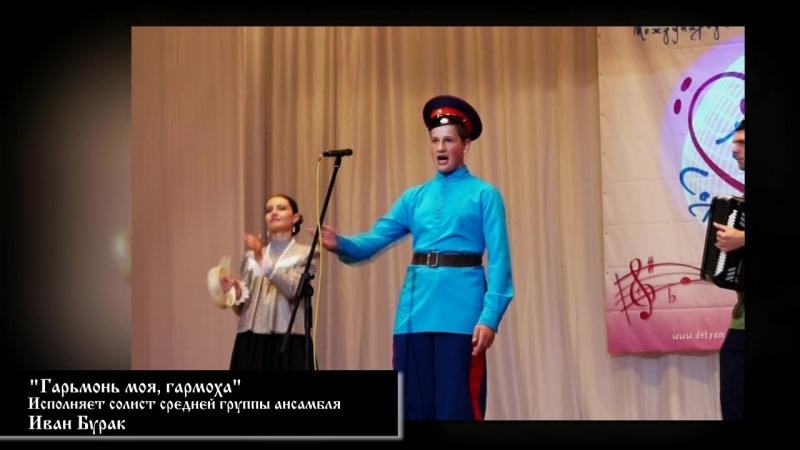Гармонь моя, гармоха - Иван Бурак