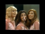 Ray Conniff's Orchestra - Tie A Yellow Ribbon Round The Ole Oak Tree (1973, Tony Orlando and Dawn cover)