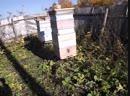 Как забираю мед у пчёл и делаю подготовку к зимовке 2019.