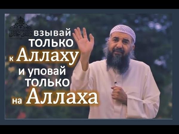 Взывай только к Аллаху, и уповай только на Него | шейх Сулайман ар-Рухайли