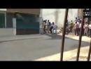 В Индии леопард вырвался из здания и укусил мужчину