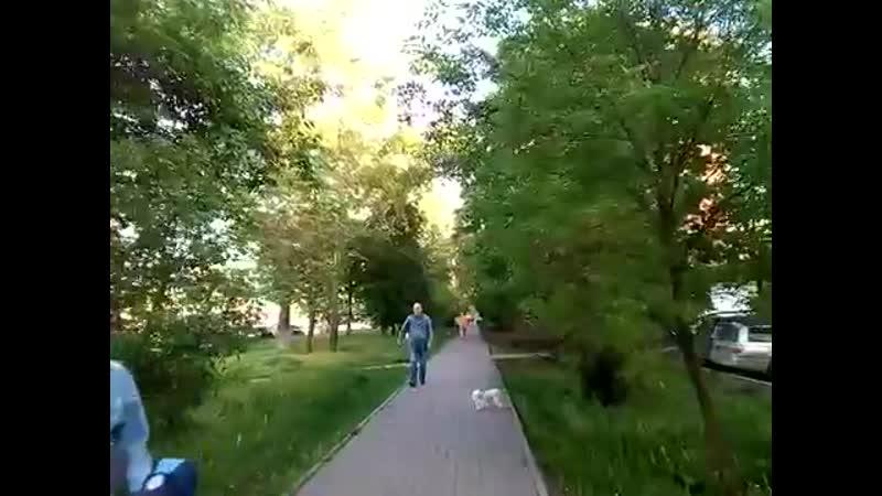 Химки 140 улица Родионова 9 го девятого мая 5 й мкр пятый микрорайон Химок ул дружбы днем весной